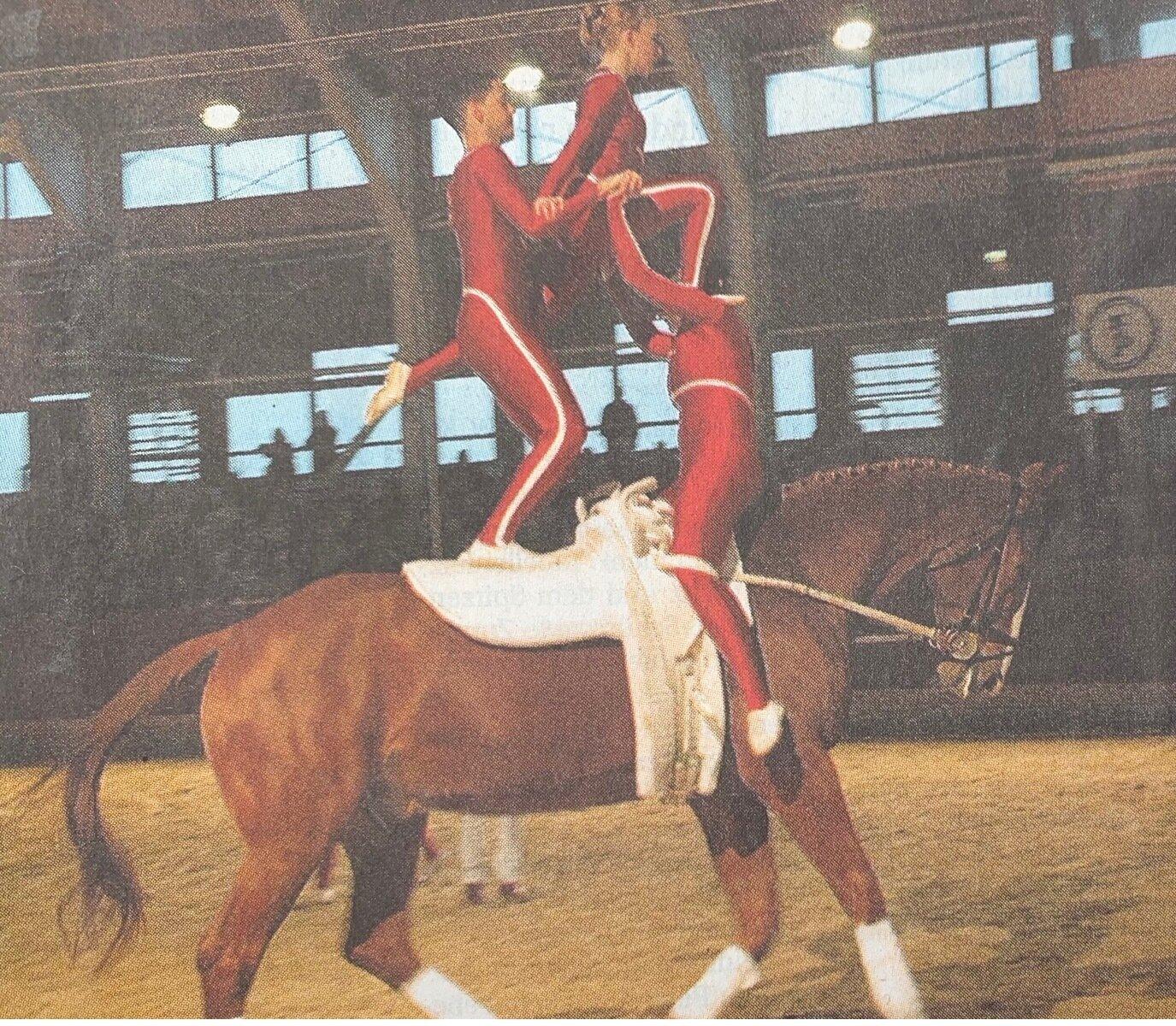 Akrobatik hoch zu Ross
