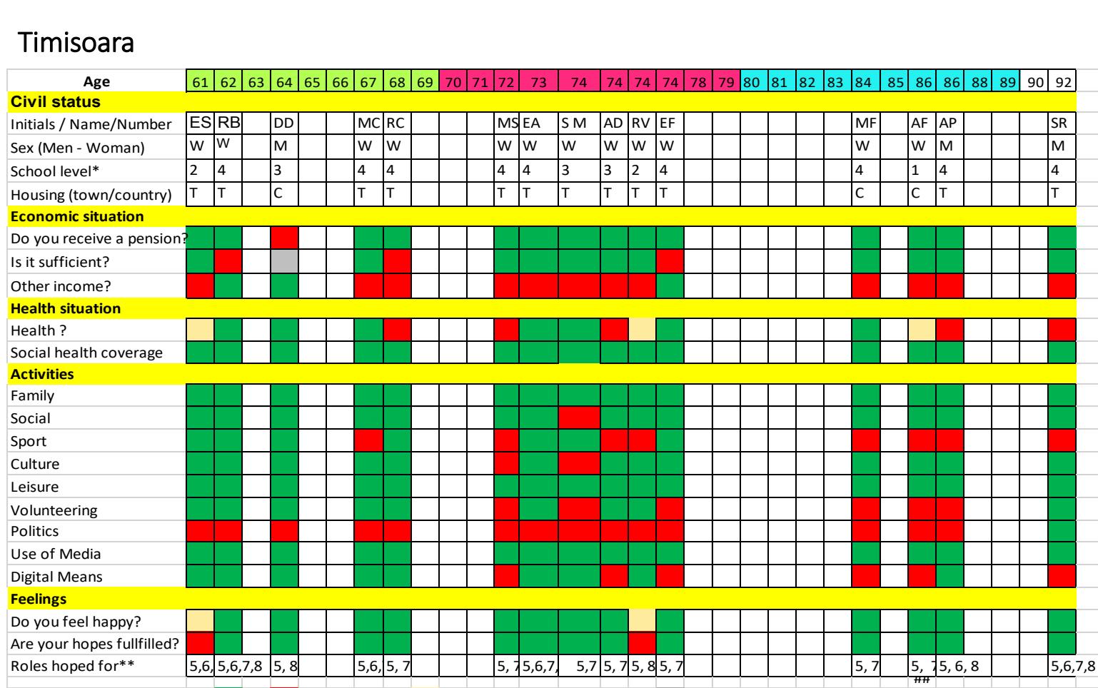 Timisoara grid