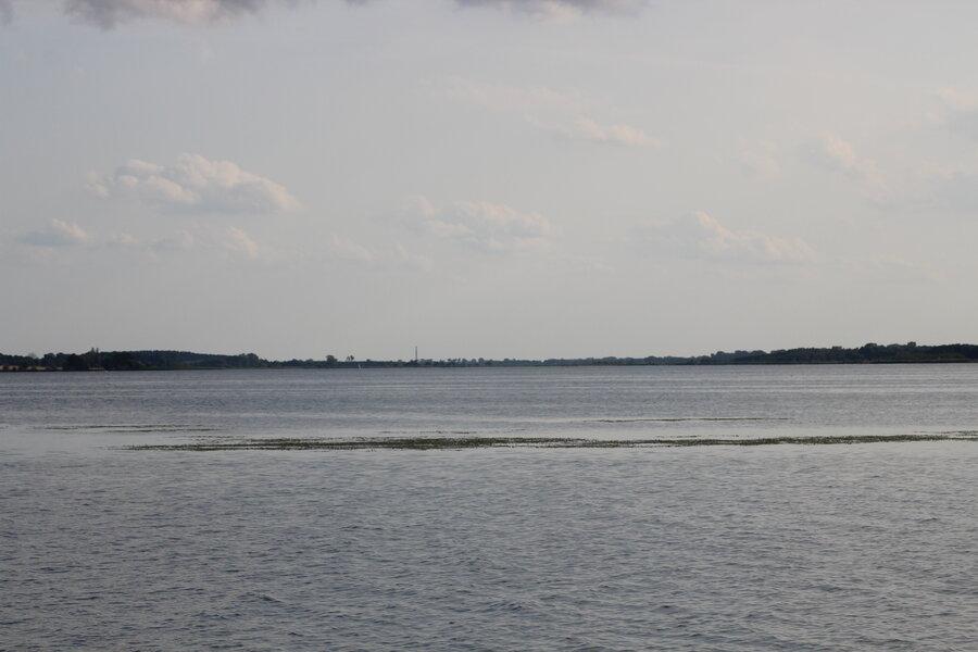 Krautfelder in Fahrwassernähe