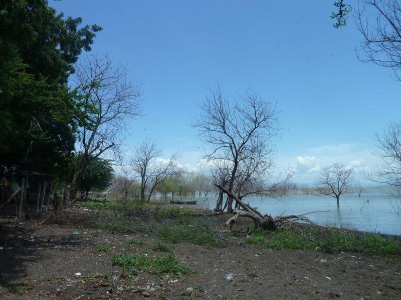 Der Managuasee reichte bis in Maynors Garten