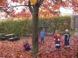 Kinder Herbst
