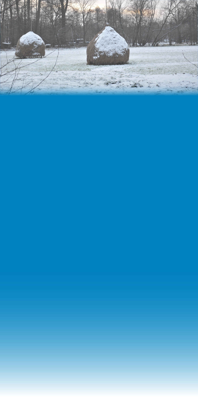 Hintergrund_Webseite_3000x1445px_Winter im Spreewald_Foto_Rattei_neu2017