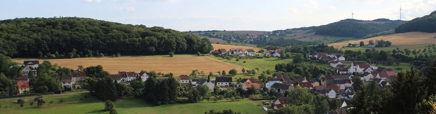 Blick über Langweiler nach Homberg