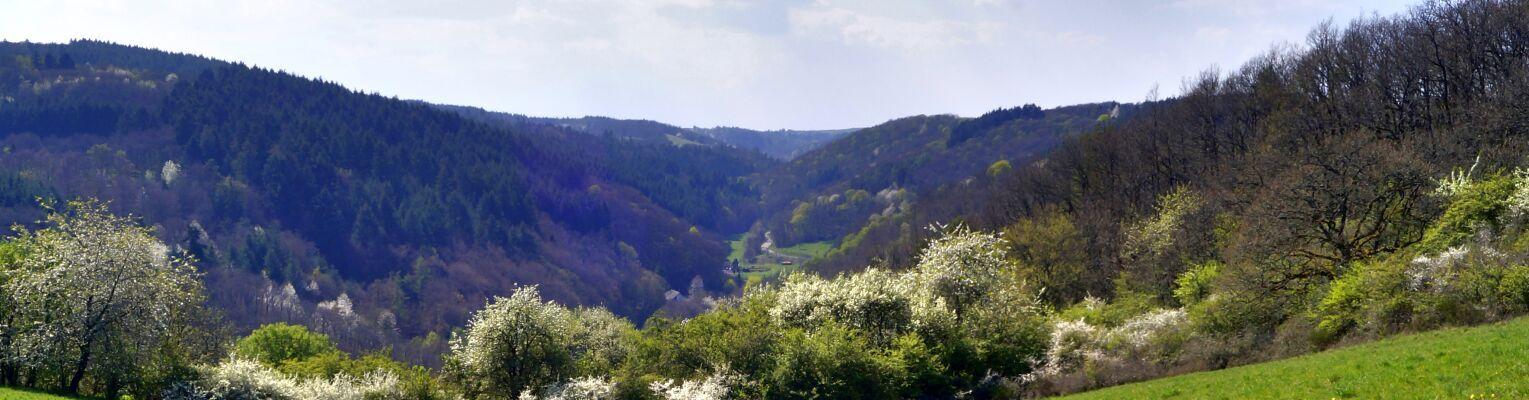 Langweiler - Jeckenbachtal