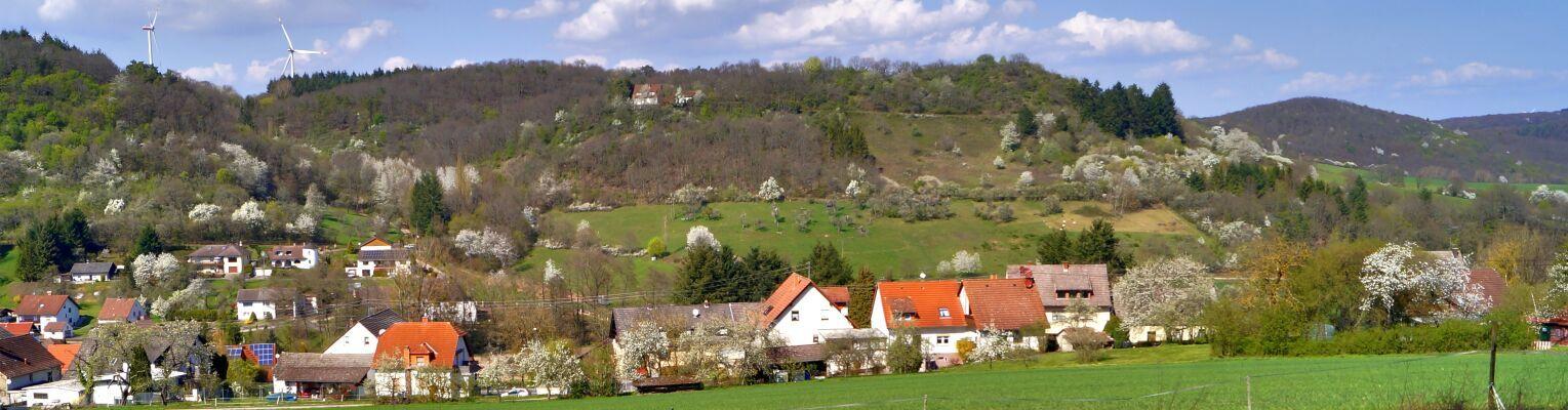 Langweiler - Nord Ost Blick