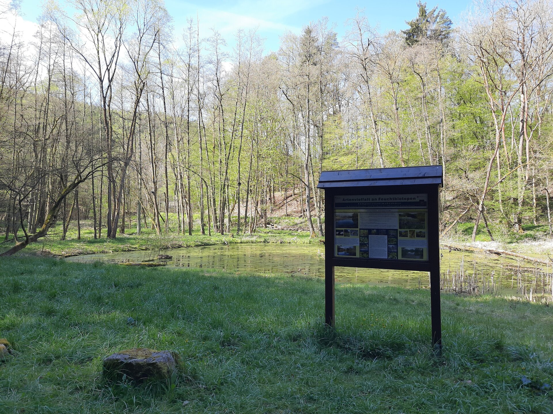 Zeitzgrund - Teich an der Rabsburg