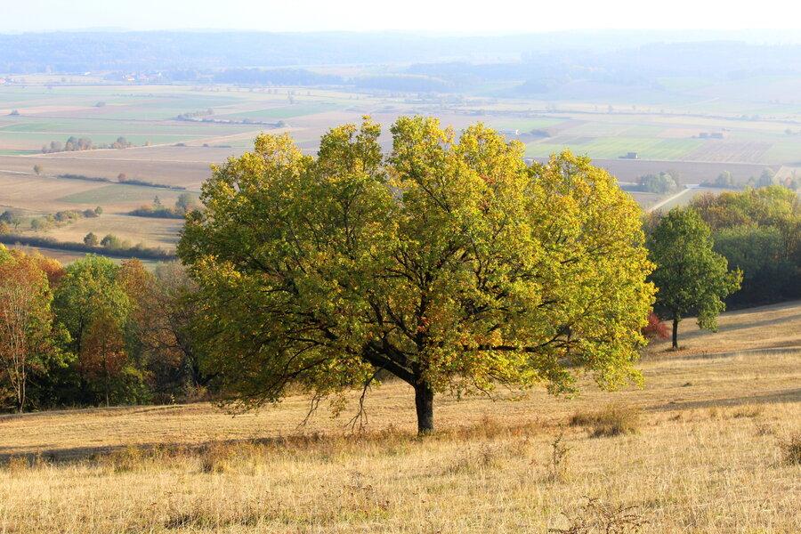 Blick vom Hesselberg im Herbst