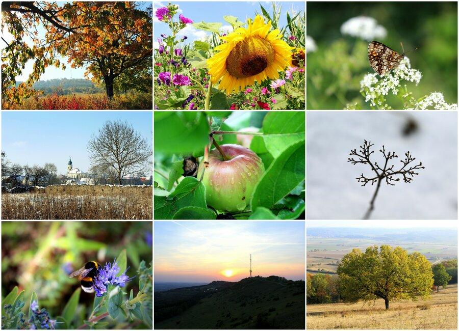 Die Region Hesselberg im Verlauf der Jahreszeiten