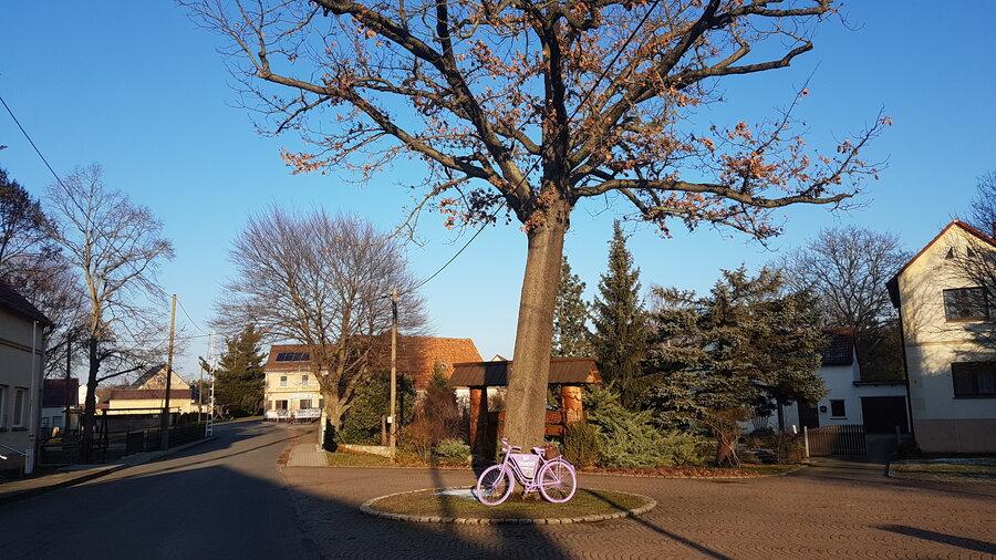 Fahrrad01®Caroline Petrahn