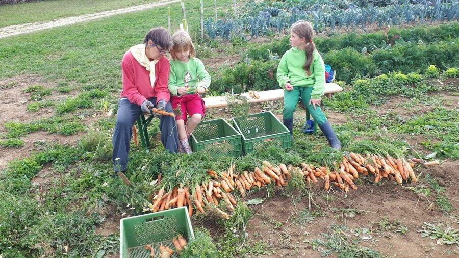 Was_wir_tun_-_Solidarische_Landwirtschaft