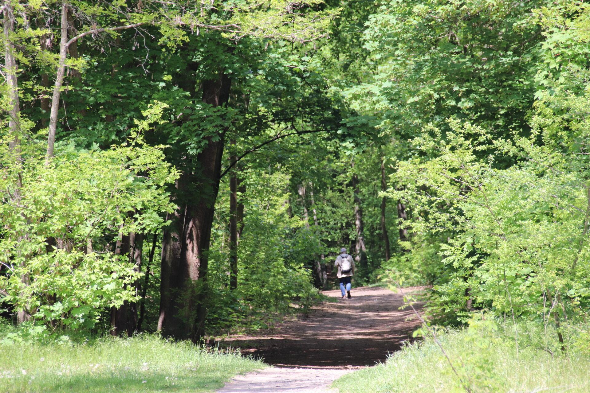 Rad- und Wanderwege laden zu Ausflügen ein.