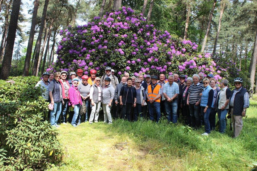 Pättkesfahrer im Rhododendrenpark