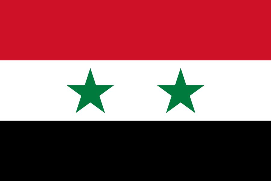Foto zeigt Flagge von Syrien