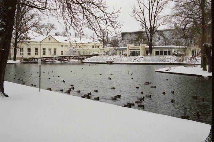 Kurpark und Teich im Winter