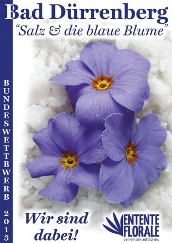 Plakat - Salz und die Blaue Blume