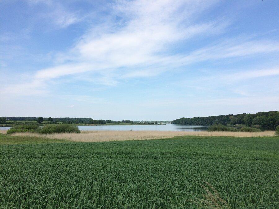Blick auf den Bothkamper See von Bissee nach Kirchbarkau