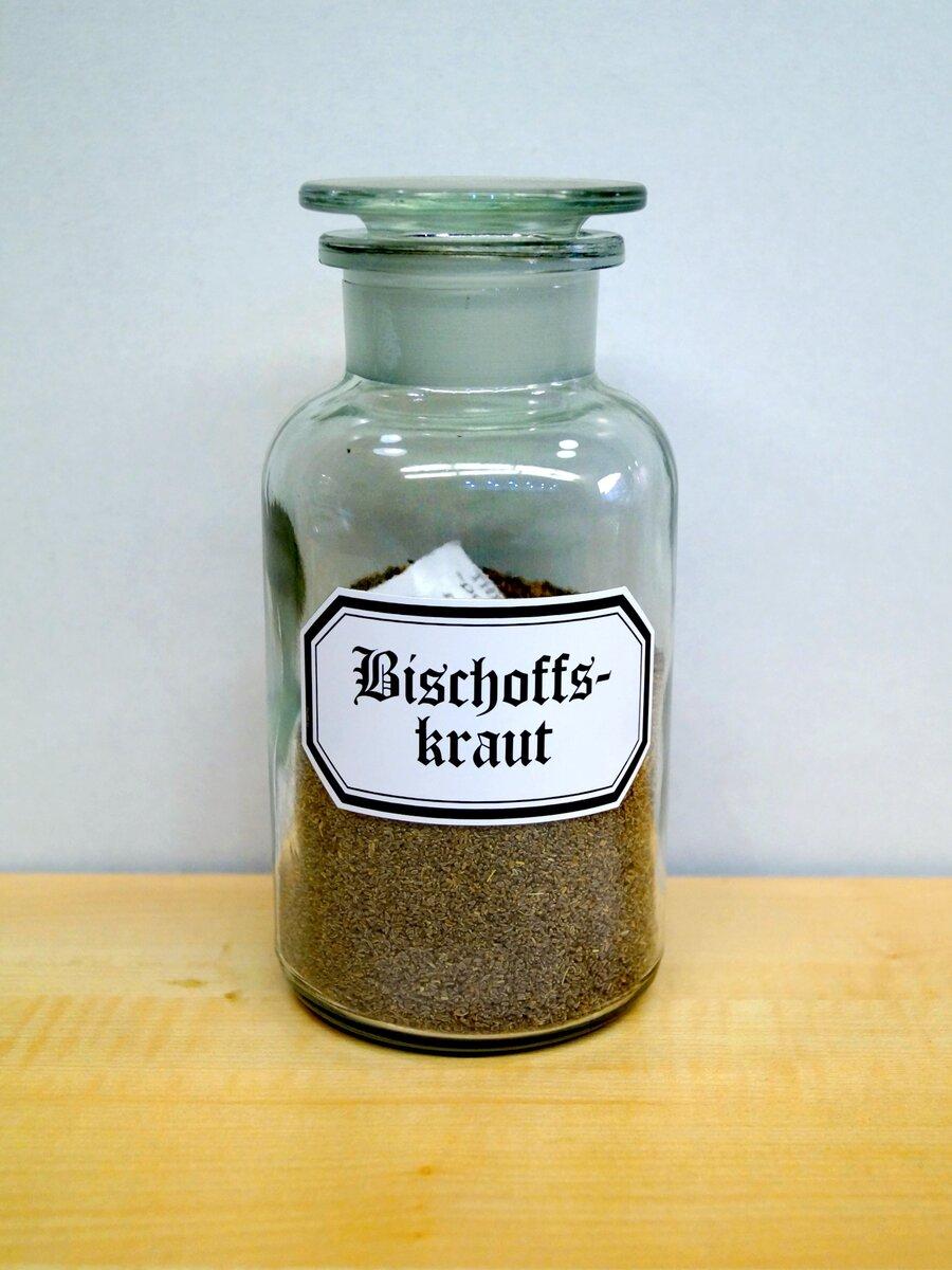 Bischoffskraut, ©Stephan Becker, Brüssow