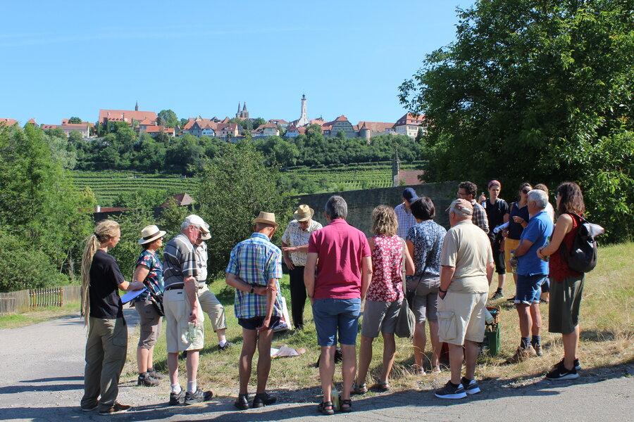 Die Teilnehmenden vor der Kulisse Rothenburgs