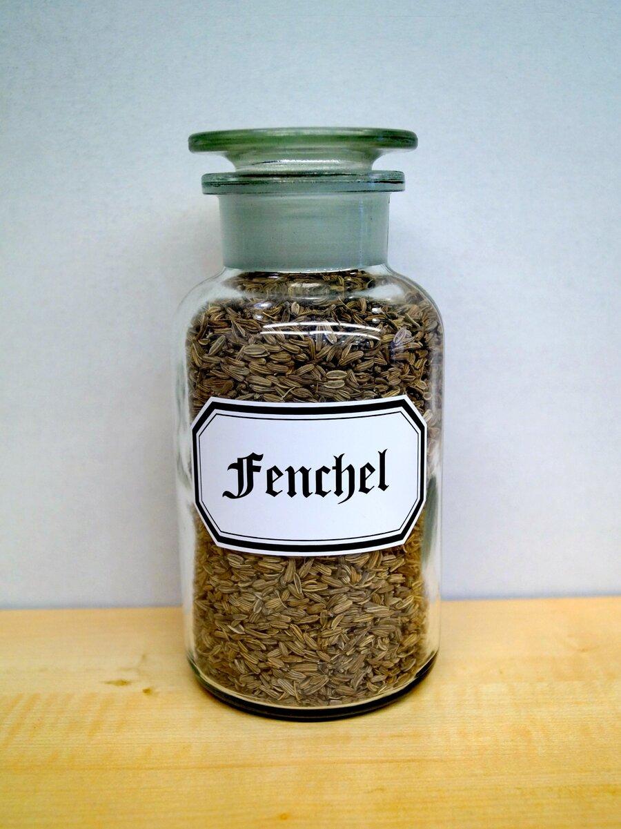Fenchel, ©Stephan Becker, Brüssow