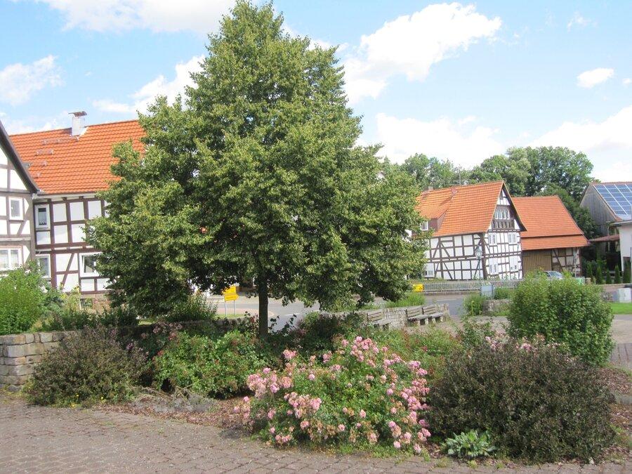 Dorfplatz Eulersdorf 1