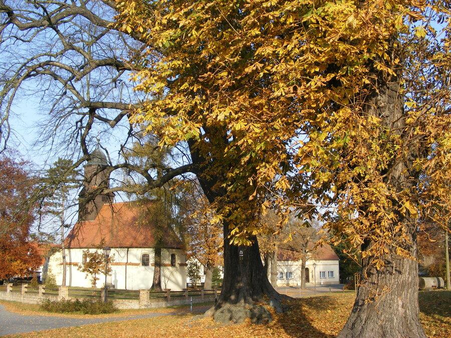 Kirchplatz®Heimatverein