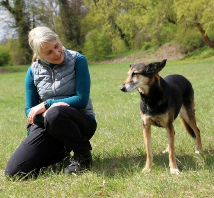 Rike Kranefeld Hundeerzieherin / Verhaltensberaterin IHK