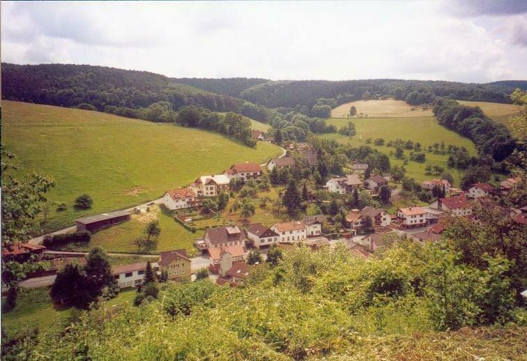 Blick auf Gammelsbach