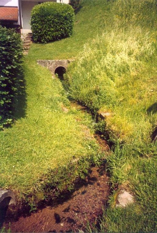 Bachlauf beim Burgbrunnen