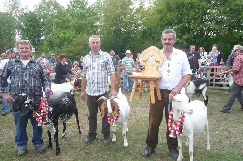 Siegerziegen: von links Seltene Rassen Günther Zill, Burenziegen Herbert Bauer, Milchziegen Werner Sauer