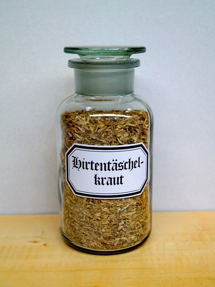 Hirtentäschelkraut, ©Stephan Becker, Brüssow
