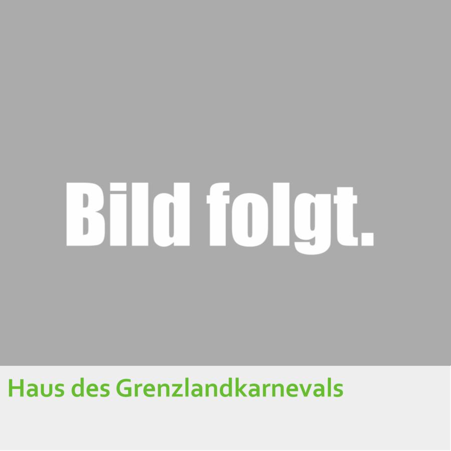 Haus_des_Grenzlandkarnevals