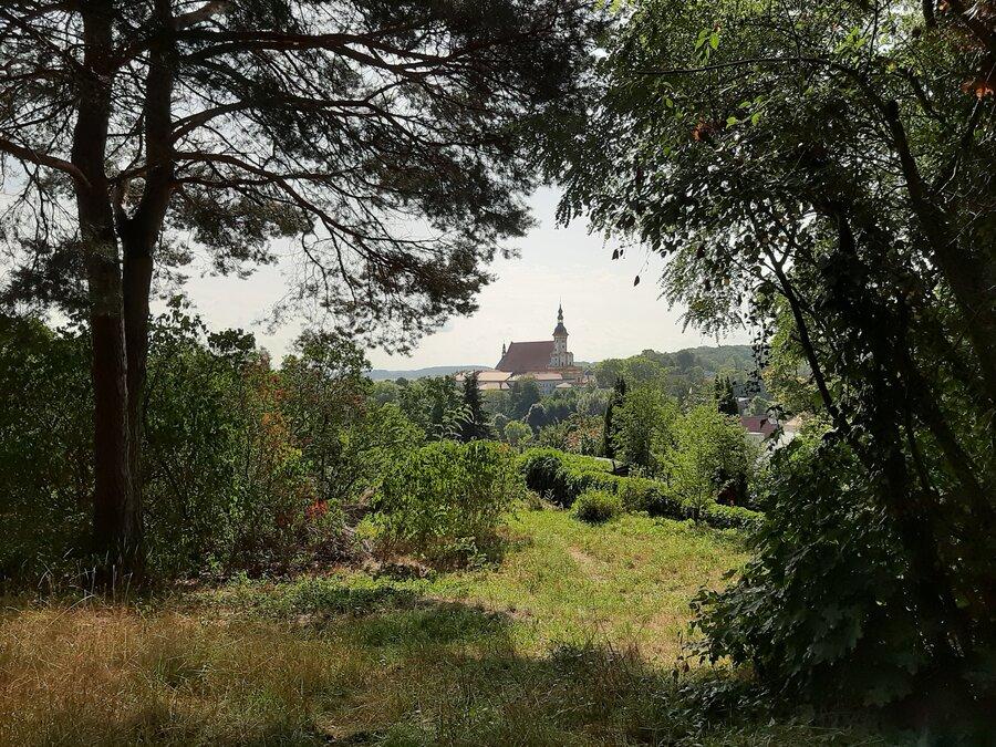 Blick vom Kulisch Berg Foto: Besucherinformation Neuzelle