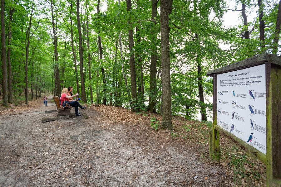 Wanderung, Schlaubetal, Wirchensee, Picknick, Rast, Beschilderung, Naturpark, See, Wald, Seenland Oder-Spree // Foto: Florian Läufer