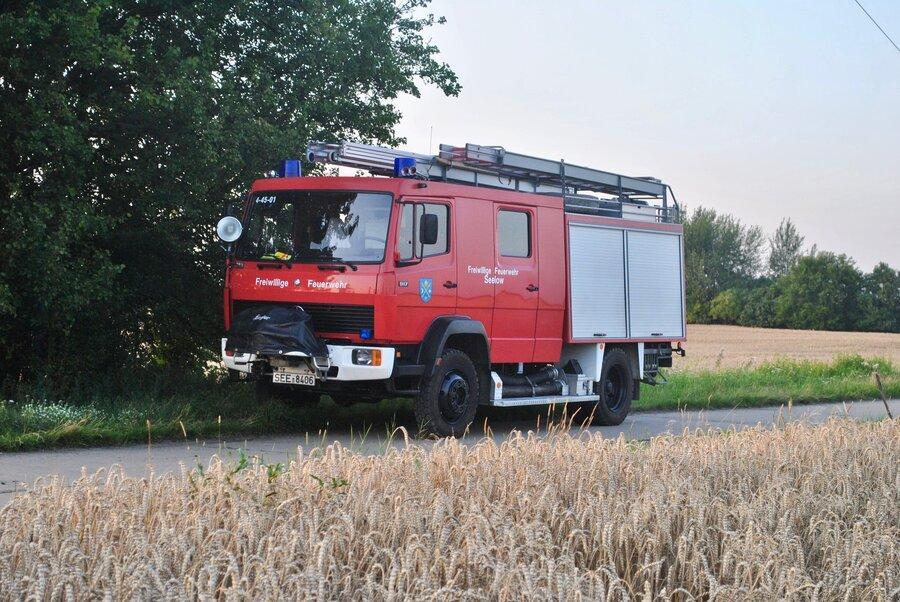 LF 16 (Rett)
