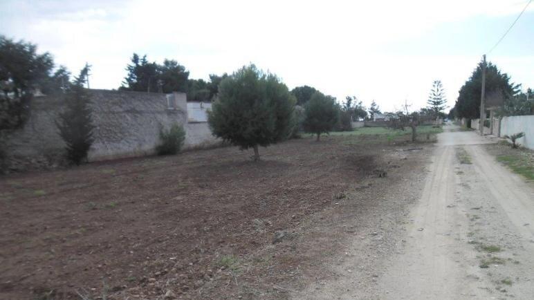 Grundstück Arcangelo