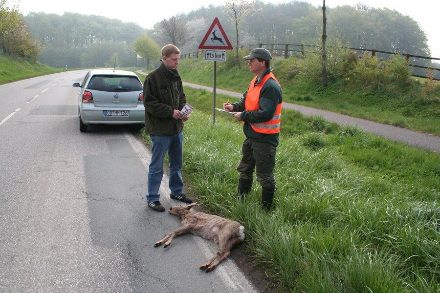 Wildunfälle Quelle: Börner/DJV