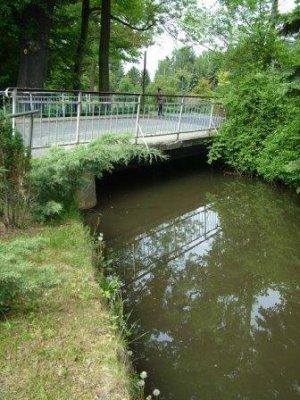 Brücke - mai 2012