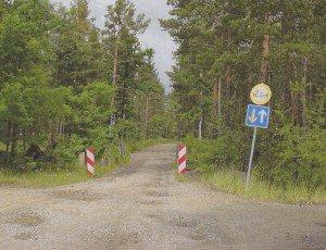 vorher - Elsterwegabschnitt im Wald