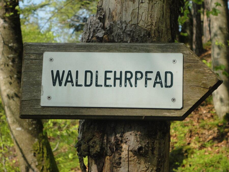 Waldlehrpfad 2
