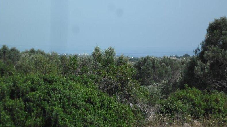 Grundstück Ingrid