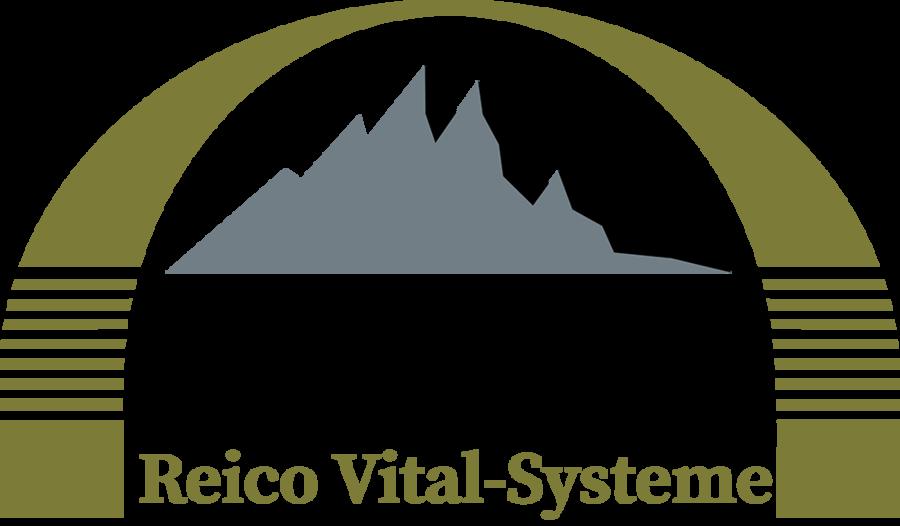 vp-logo-2019