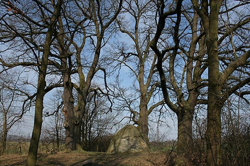 Riesenstein im Schloßpark Ringenwalde