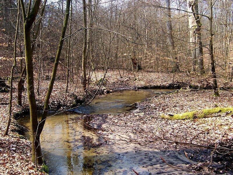 Nonnenfließ bei Eberswalde