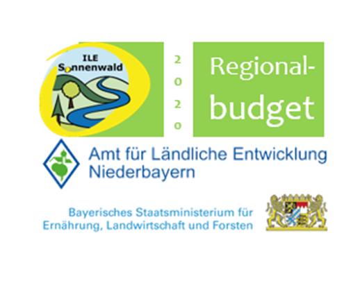 Regionalbudget 2020