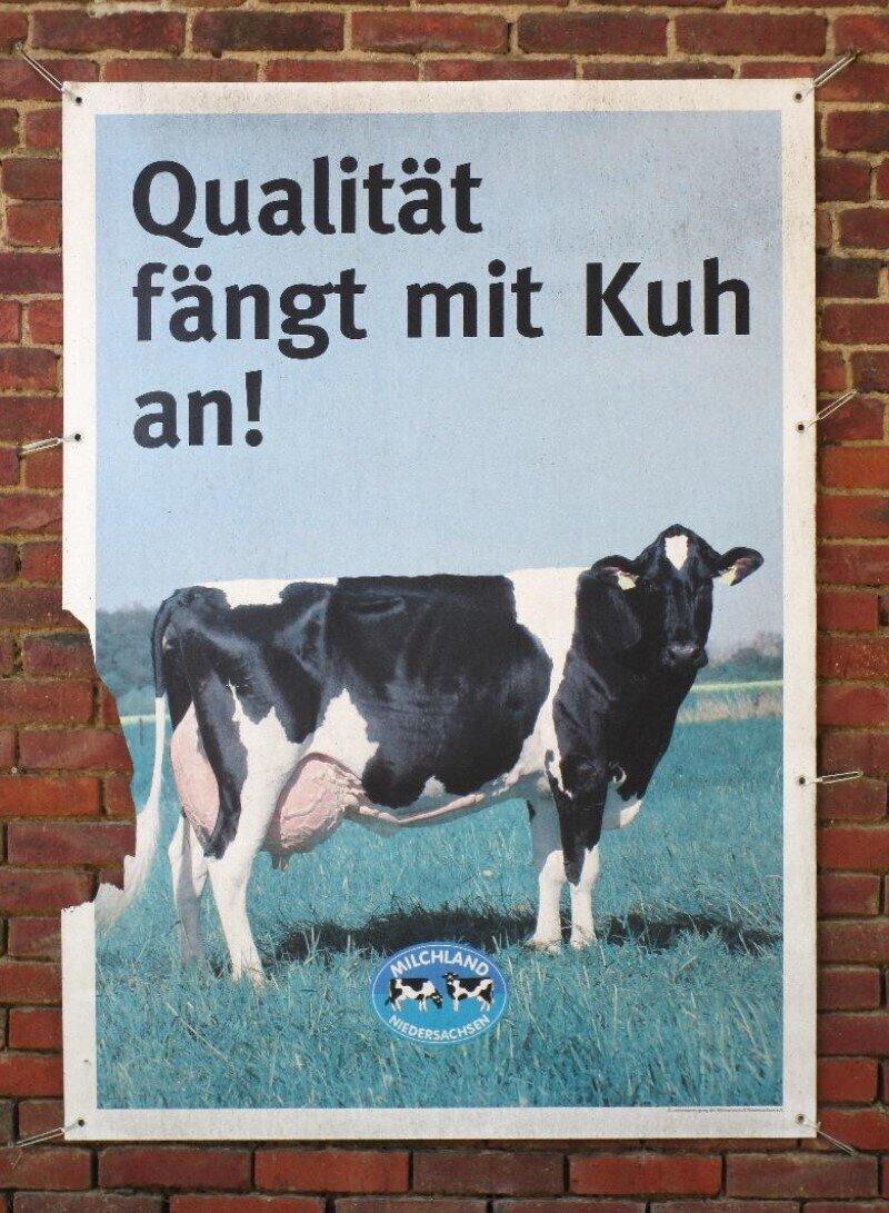 Milchviehhaltung