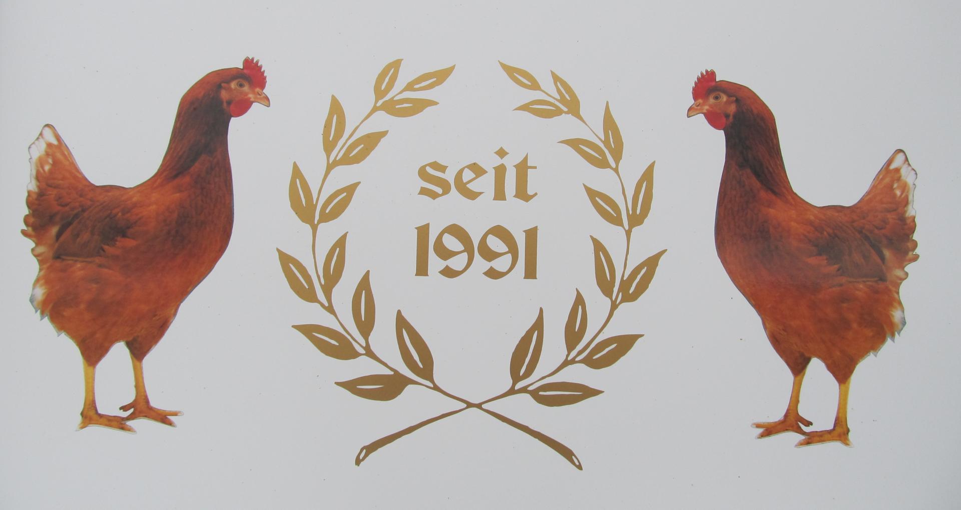 Seit 1991
