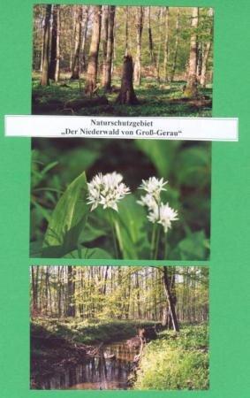 niederwald_gg