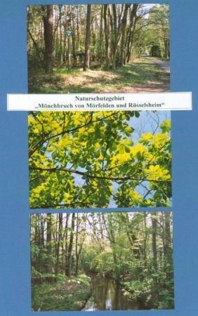 m_nchbruch