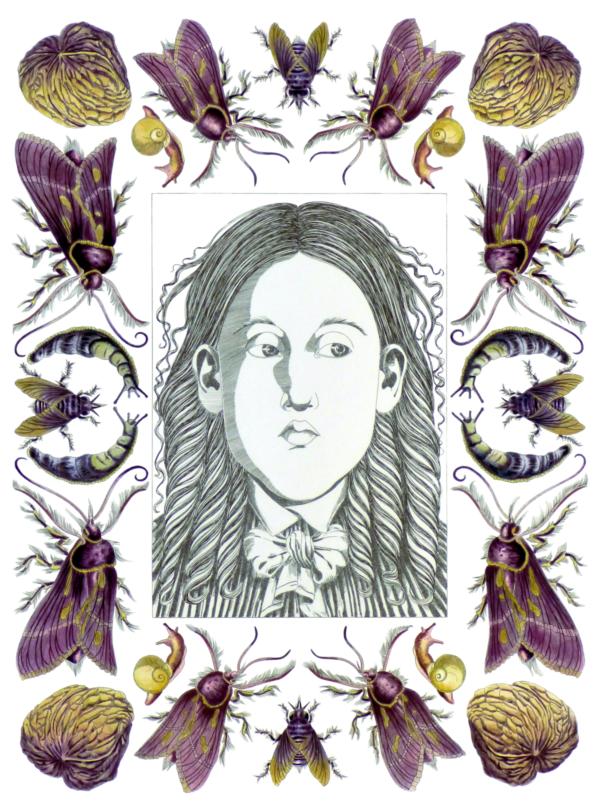 Constanze Schulz | Zeichnungen zur Literatur