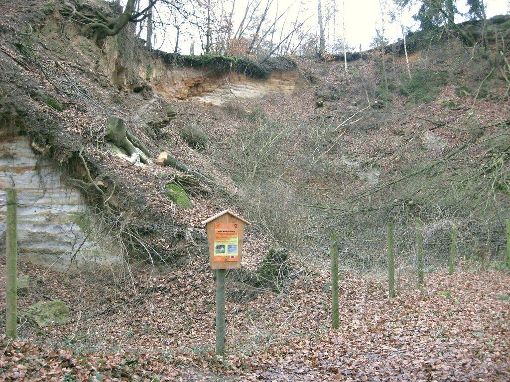 Sandgrube am Felsenmeer